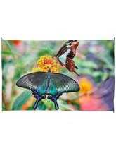 Zest For Life Butterfly Buds Digital Print Tapestry Tablecloth Beach She... - $84.00