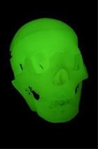Anatomy Model Life Size GLOW HUMAN SKELETON SKULL Gothic Horror Prop SPR... - $34.62
