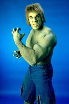 Lou Ferrigno The Incredible Hulk 18x24 Poster - $23.99
