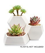Modern Ceramic Geometric Planter 3Pack-White Hexagon Succulent Plant NEW... - $50.92 CAD
