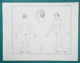 ANATOMY Human Body Proportions - 1828 Antique Print - $16.20