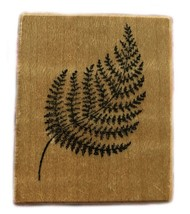 Rubber Stamp 1999 PSX C-583 FERN LEAF Plant Plants Woods Garden Greens - $11.87
