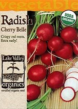 Organic Cherry Belle Radish Seeds - 4 Grams - $6.99