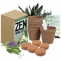 Zen Garden Grow Kit - Spirtual House Plants Healing Plant Grow Kit Gift ... - $21.78