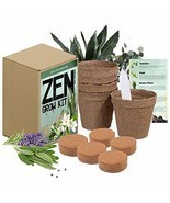 Zen Garden Grow Kit - Spirtual House Plants Healing Plant Grow Kit Gift ... - $21.78