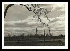 Desolate Mood Photograph Clouds Electric Wires Bare Tree Branch Stone Wa... - $14.99