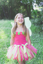 Fairy Tutu Dress, Fairy Tutu, Girls Fairy Costume, Fairy Party Tutu, Fai... - $40.00+