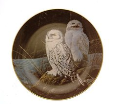 Danbury Mint The Owls of North America The Wise Ones owl Plate GB93 - $31.84