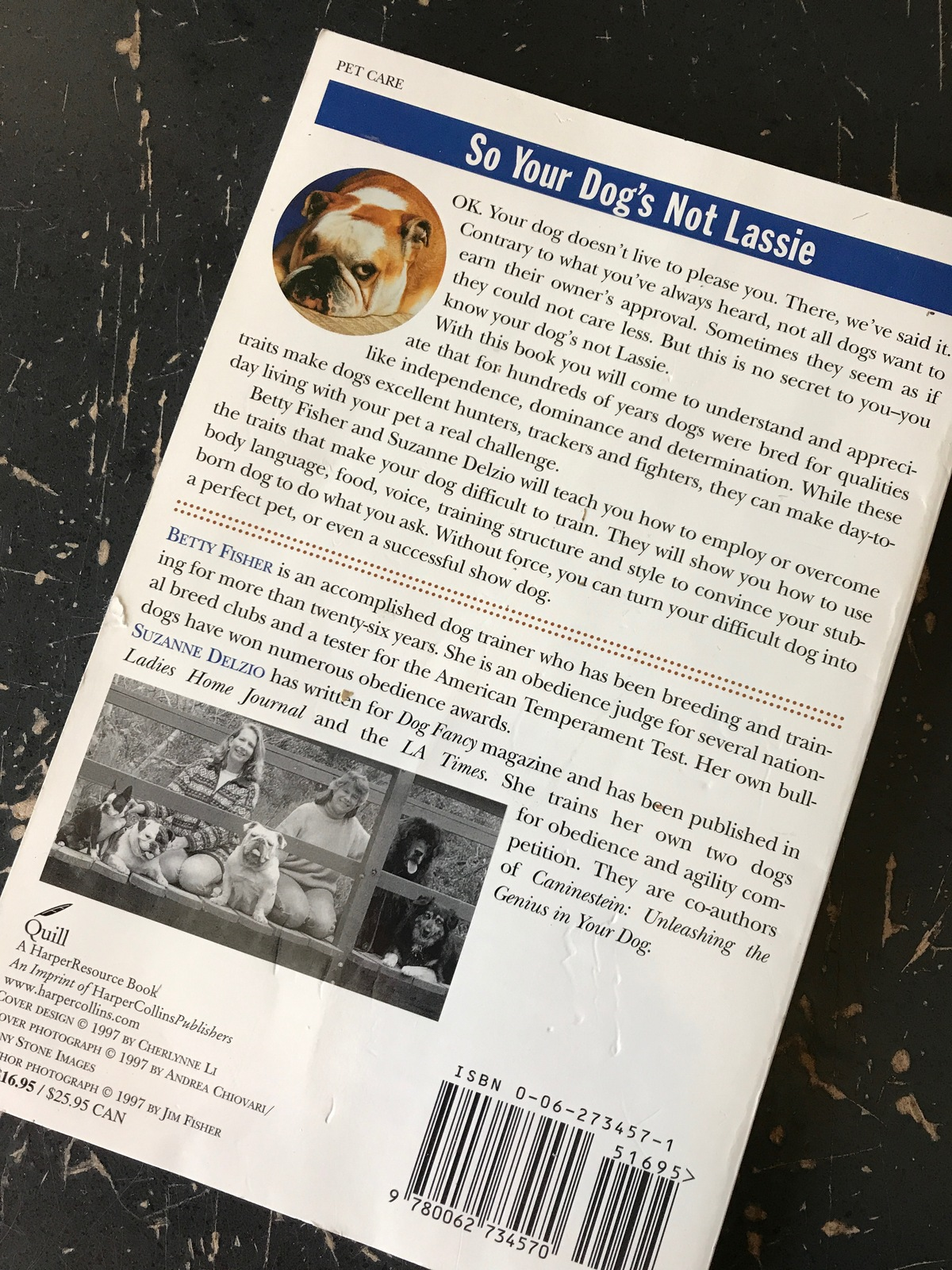 So Your Dog's Not Lassie Fisher Delzio training tips for your dog excellent cond