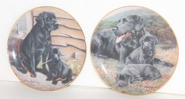 Collector Plates Labradors Collection from The Franklin Mint Nigel Hemming - $14.00