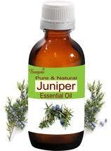 Bangota Juniper Juniperus communis Pure Natural Essential Oil 5ml to 250ml - $11.35+