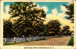 LINEN POSTCARD- GREETINGS FROM MONTICELLO, NY  BK22 - $4.41