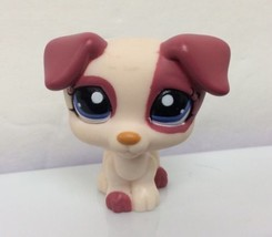 Littlest Pet Shop #1200 Cream & Magenta Jack Russell Terrier Puppy Dog (G) - $8.66