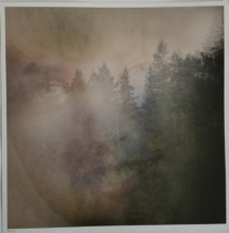 Promo Poster, Laura Palmer in  Twin Peaks TV Series 12x12 Numbered Posters - $9.95
