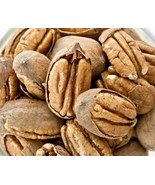 Texas Pecans Whole With Shell Fresh Crop Easy To Crack Organic Candy Pie... - $26.00+