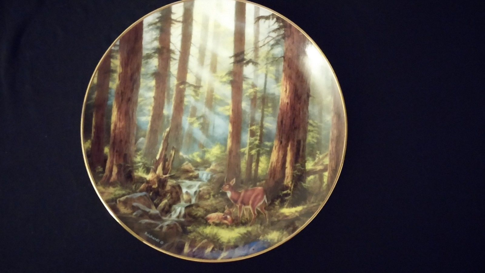 Primary image for 1993 God Bless America Sunlit Retreat Danbury Mint Collectors Edition Plate