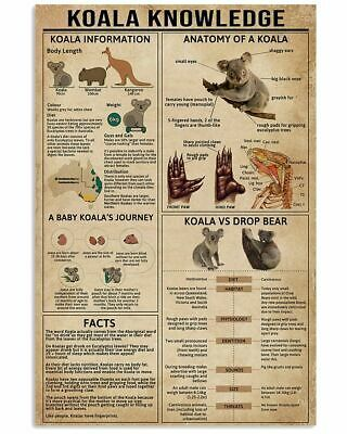 Primary image for Koala Information Poster, Learn More About Wild Animal, Gift For Your Children