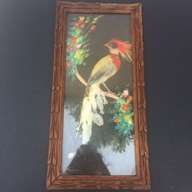 VINTAGE Bird Real Feathers Painted Mexico Folk Art Print Framed Wood Pic... - $18.69