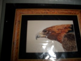 Cross My Heart Inc.~Golden Eagle Counted Cross Stitch Kit - $18.00