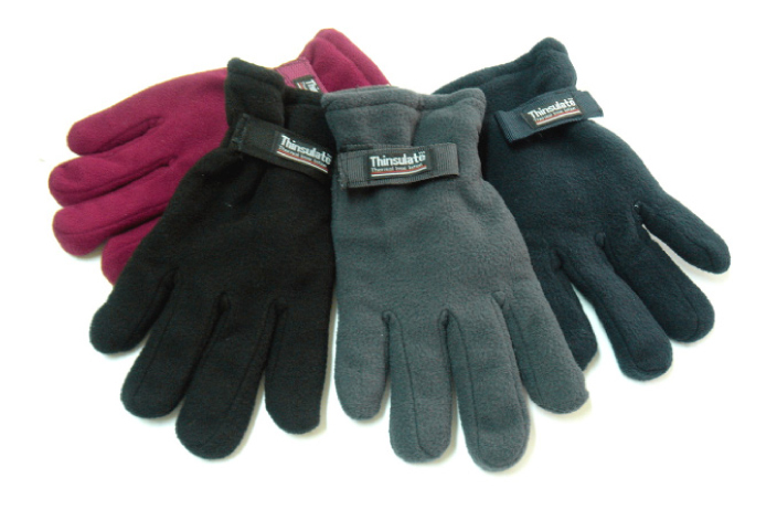 Case of [36] Men's Polar Fleece Gloves