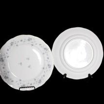 Vintage Set of 2 Johann Haviland Blue Garland 10'' dinner plates fine China  - $18.43