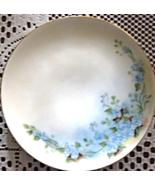 Thomas Serves-Hand painted-Dessert Plate-Blue Flowers-Bavaria-Early 1900's - $8.00