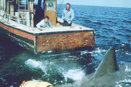 Richard Dreyfuss and Robert Shaw in Jaws 18x24 Poster - $23.99
