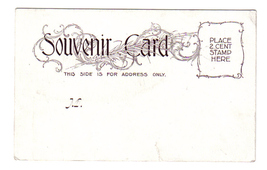 Vintage Patriotic Postcard Souvenir Livingston Hudson image 2