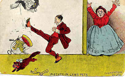 Mother In Laws and Pets artist signed Vintage Post Card