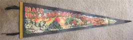 Vintage BLACK HILLS BADLANDS S D Souvenir Felt Pennant - $49.99