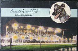 Vintage SARASOTA KENNEL CLUB FLORIDA Postcard 1955 FLORIDA DOG RACE TRACK