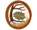 The last leaf thumb155 crop