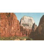 The Great White Thorne, Zion National Park, Utah old unused Postcard  - $4.35