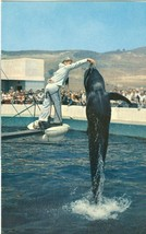 Marineland of the Pacific, Palos Verdes Southern California old unused Postcard - $4.50