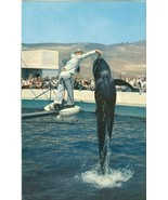 Marineland of the Pacific, Palos Verdes Southern California old unused P... - $4.50