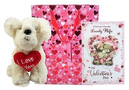 3 PIECE VALENTINE'S WIFE TEDDY HEART BOX CARD PLUSH TEDDY DOG HEART GIFT... - $30.03