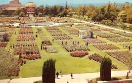 Rose Garden, Exposition Park, Los Angeles, California 1960 used Postcard  - $4.99