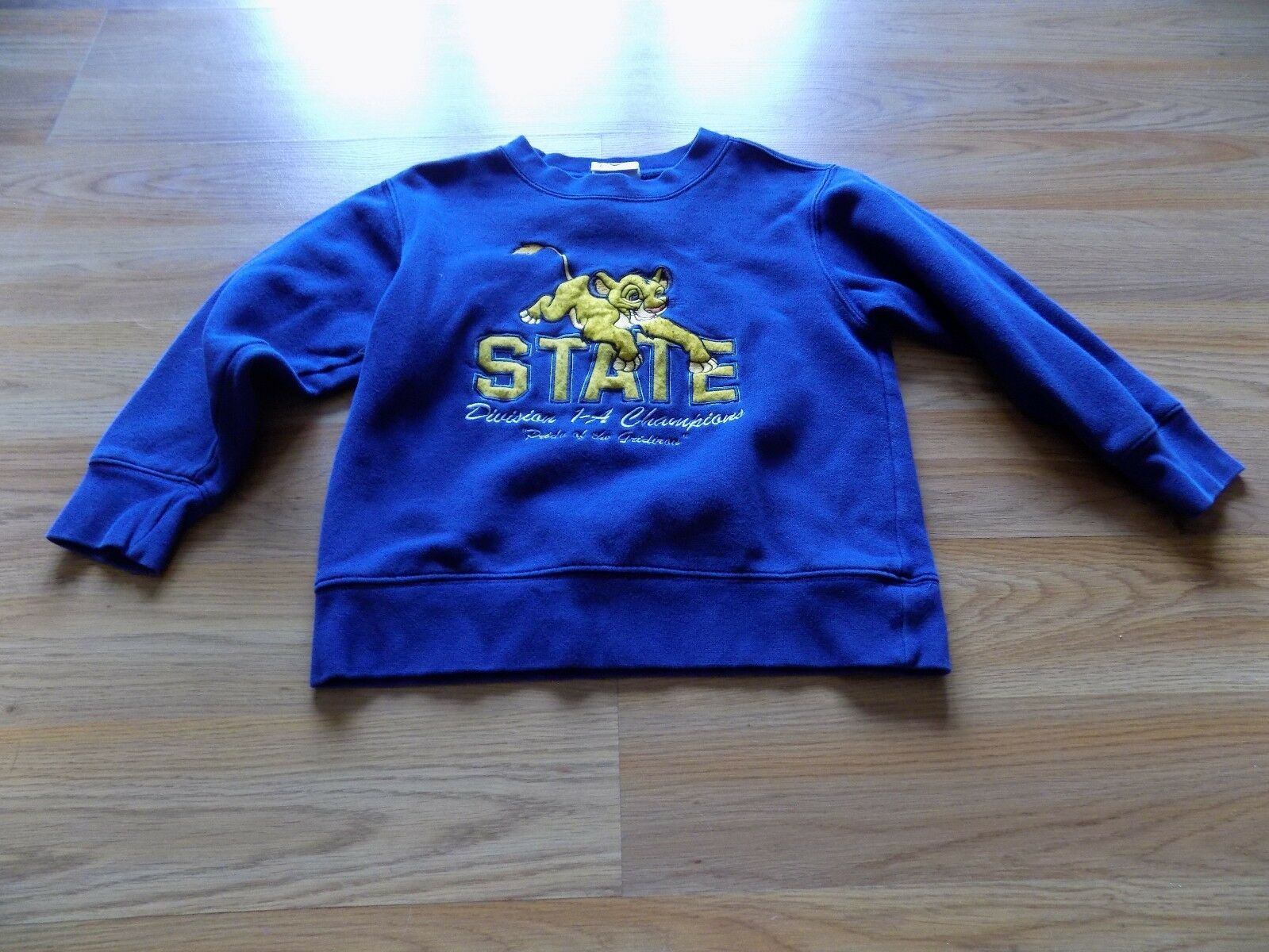 Primary image for Size XS Disney Store The Lion King Simba Cub Navy Blue Sweatshirt Sweat Shirt