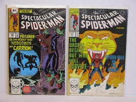 Spectacular SPIDER-MAN 163 And 171 - Free Shipping In U.S. & Canada! - $13.10