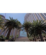7-Night Stay at the Hilton Grand Vacations Club on the Las Vegas Strip from - $480.00
