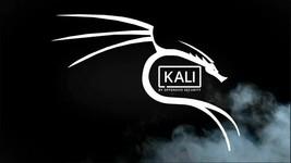 Kali Linux 16 GB Micro SD for Raspberry Pi 3/4 Latest Version - $14.99