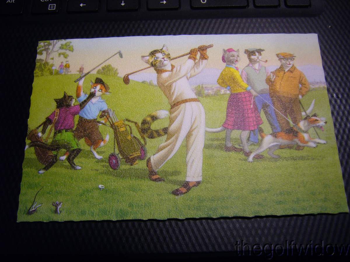 Vintage Golf Postcard Cats Playing Golf