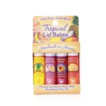 Tropical Lip Balm Sticks - Convenient 4 - Pack - $14.00