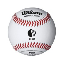 Wilson USSSA Raised Seam Baseball 12 Pack - $63.64