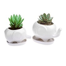 Pack of 2 Ceramic Planter Tiny Flower Plant Container Pot with Saucer Tr... - $27.43 CAD