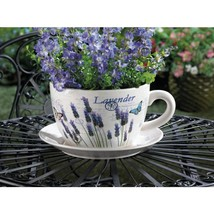 Lavender Fields Teacup Planter - $28.00
