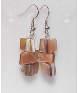 Beautiful Paua Shell Earrings - $6.99