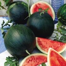 Sugar baby watermelon seeds   25 seeds non gmo1 thumb200