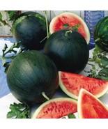 Non-GMO Sugar Baby Watermelon - 25 Seeds - $7.99