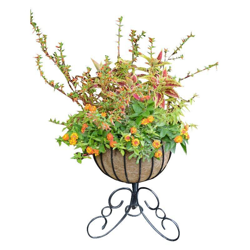 Primary image for Classic Urn Free Standing Planter and Coco Liner Set